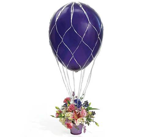 Hot air balloon the party connection your liaison to for Balloon nets for centerpieces
