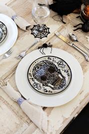 skull-plate