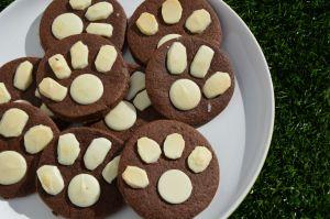 Big Cat Cookies