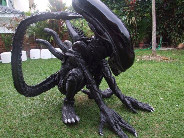 An-Amazing-Black-Alien-Costume.jpg