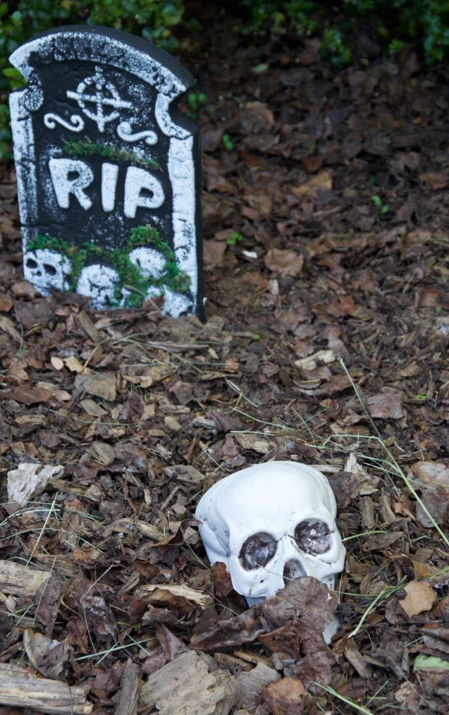 dig up graveyard.jpg
