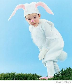 Phal_Bunny_A_new.jpg